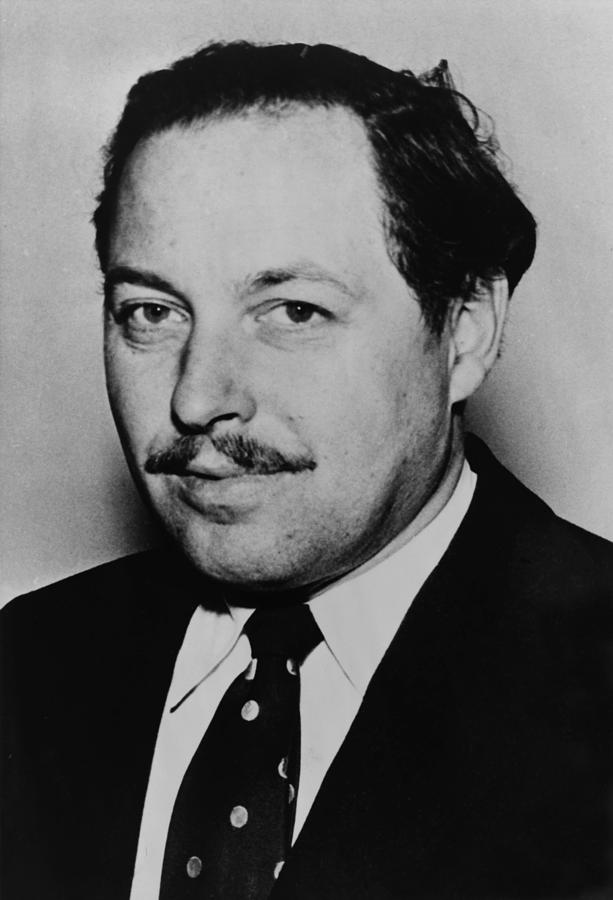 tennessee williams andalucia travel tennessee williams essay example for