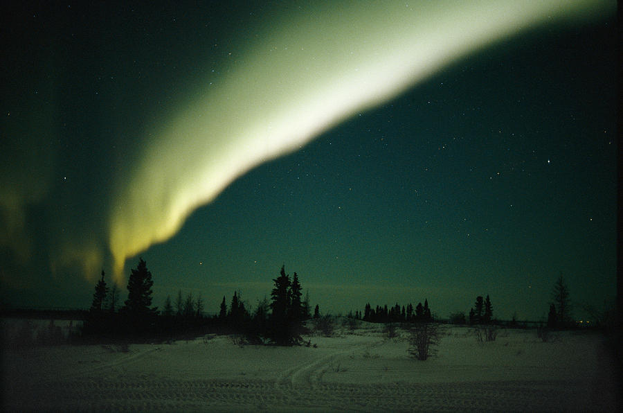 North America Photograph - The Aurora Borealis Glows Brightly by Norbert Rosing