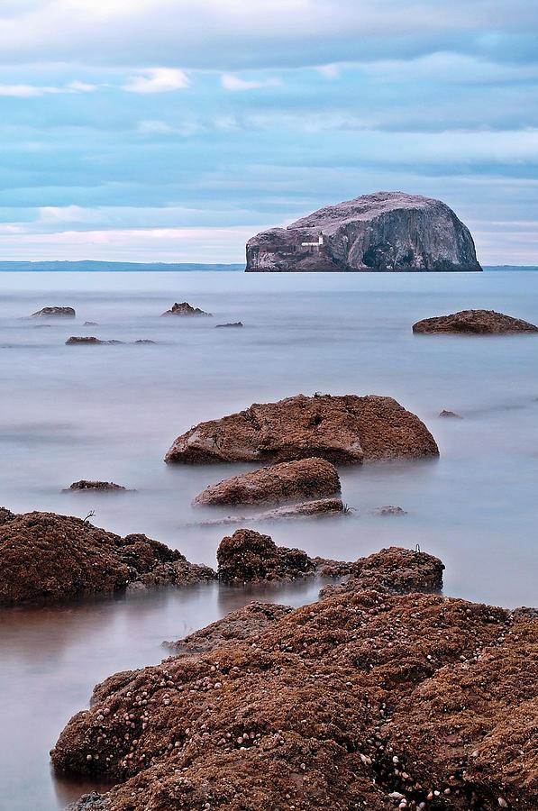 The Bass Rock Photograph