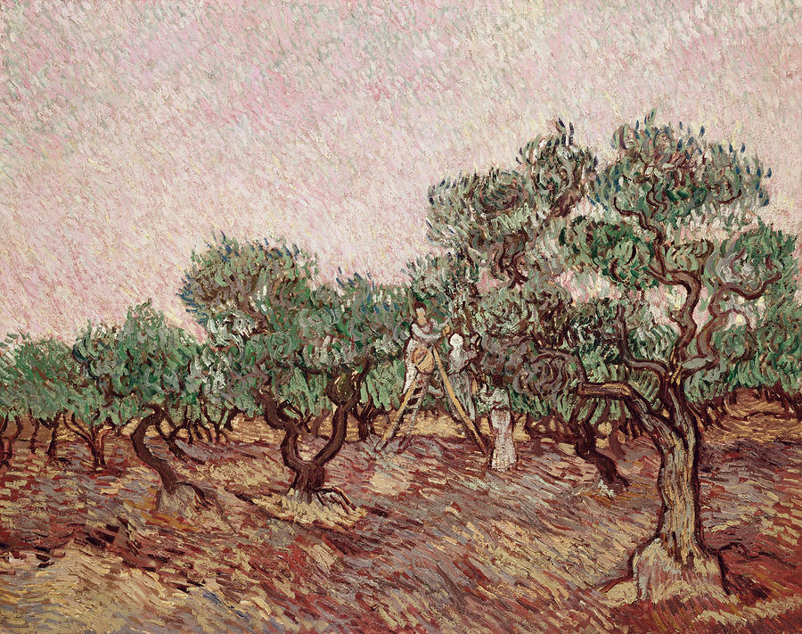 The Olive Pickers Painting