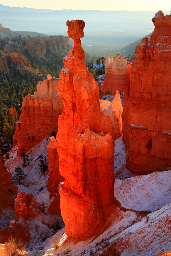 Thors Hammer In Bryce Canyon Photograph  - Thors Hammer In Bryce Canyon Fine Art Print