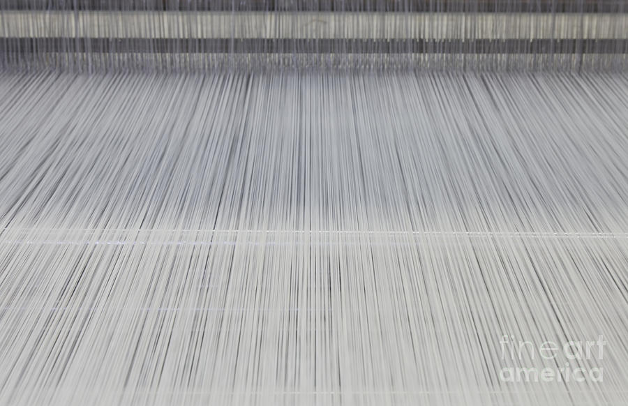 Threads In An Industrial Loom Photograph  - Threads In An Industrial Loom Fine Art Print