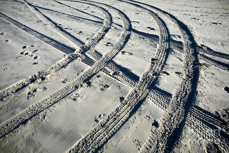 Tire Tracks And Footprints, Long Beach Peninsula, Washington Photograph
