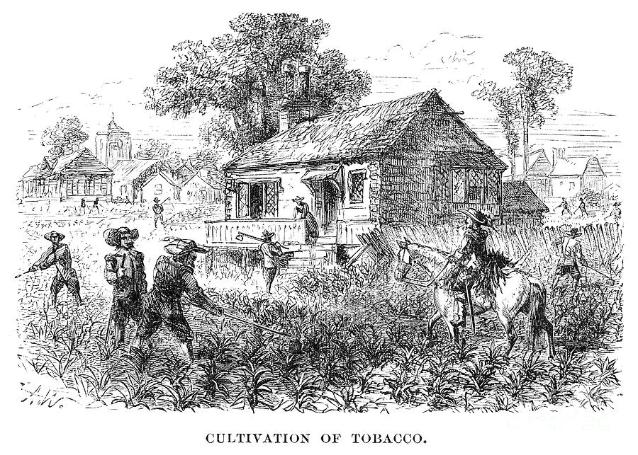 religious freedom in the middle colonies prior to 1700 American colonial life in the late 1700s:  such as seeking freedom from religious persecution,  the middle colonies were settled largely by non-english.