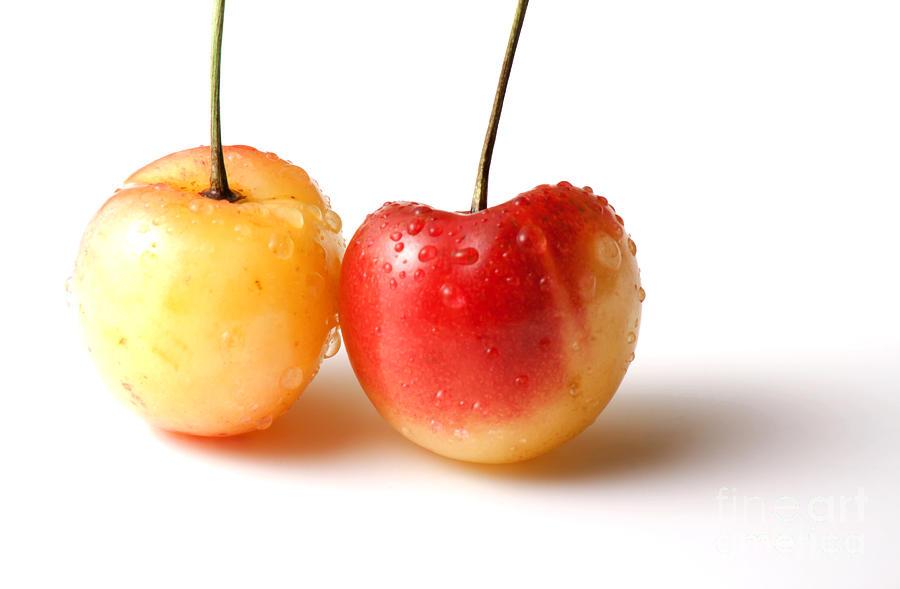 Two Rainier Cherries Photograph