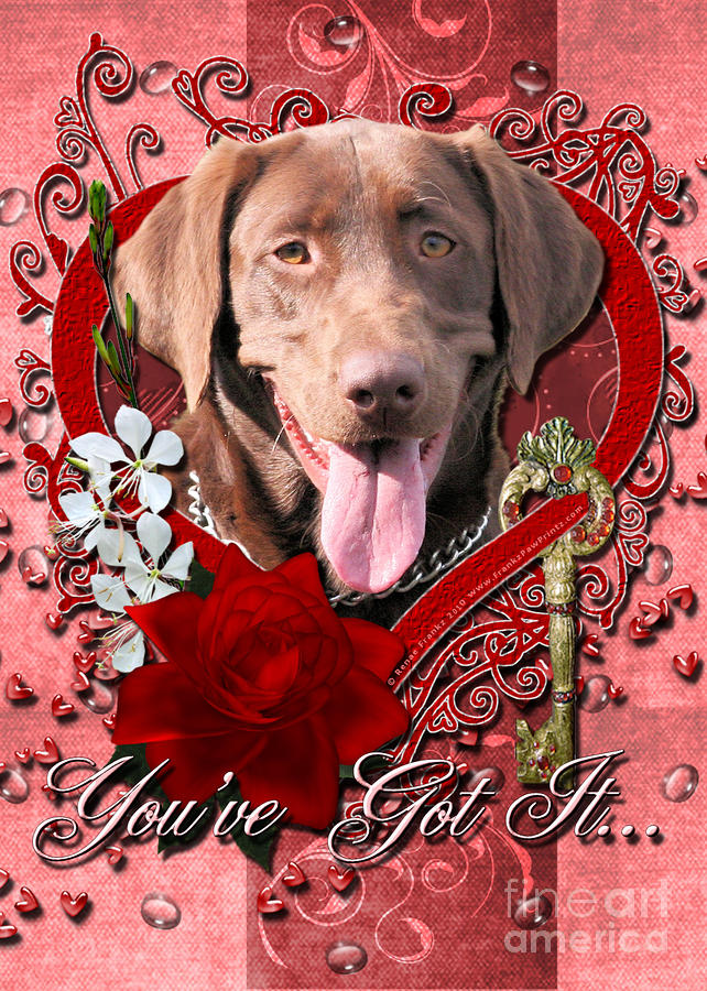 Valentines - Key To My Heart Labrador Digital Art  - Valentines - Key To My Heart Labrador Fine Art Print