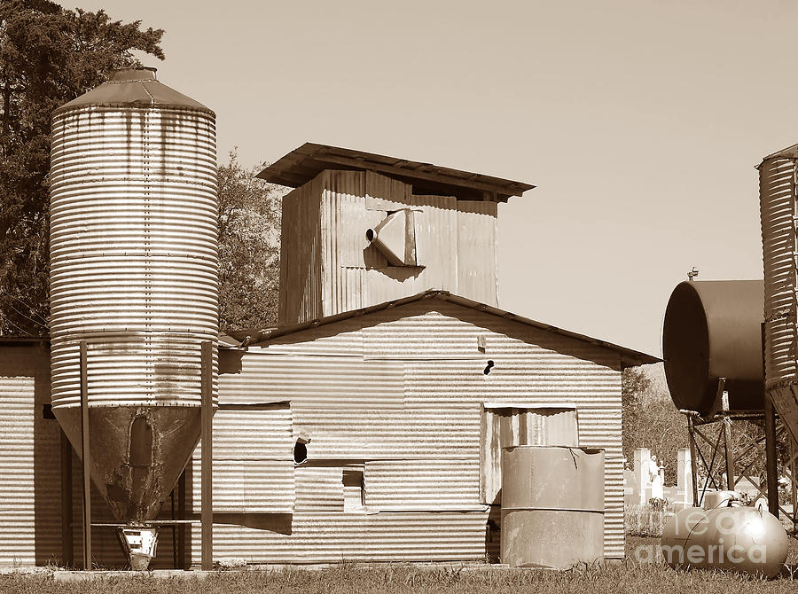 Visual Geometry - Old Texas Farm In Sepia  Photograph  - Visual Geometry - Old Texas Farm In Sepia  Fine Art Print