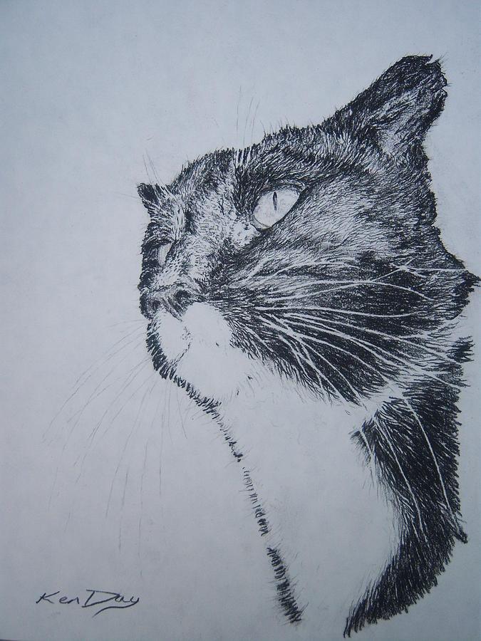Watchful Eye Drawing