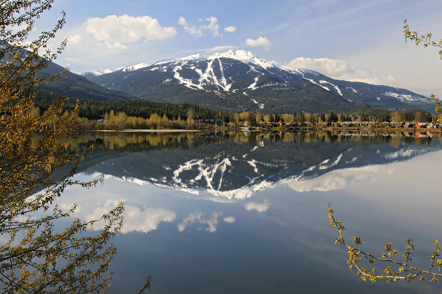 Whistler Blackcomb Green Lake Reflection Photograph  - Whistler Blackcomb Green Lake Reflection Fine Art Print