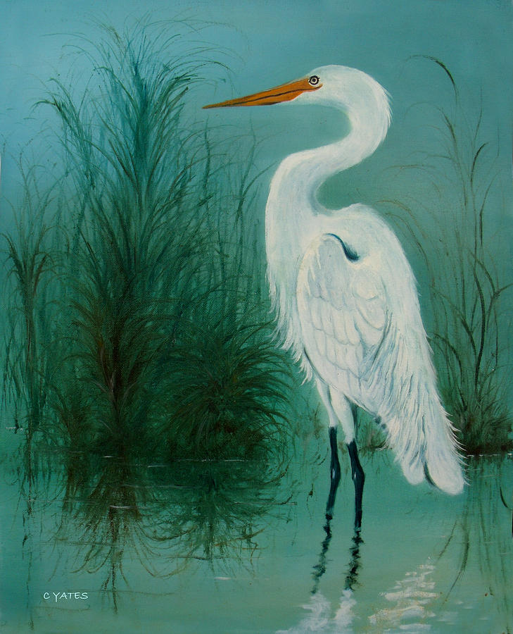 White egret 2 painting by charles yates for White heron paint