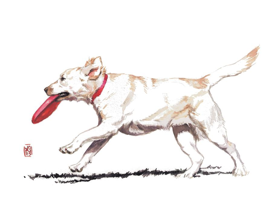 White Frisbee Dog Painting  - White Frisbee Dog Fine Art Print