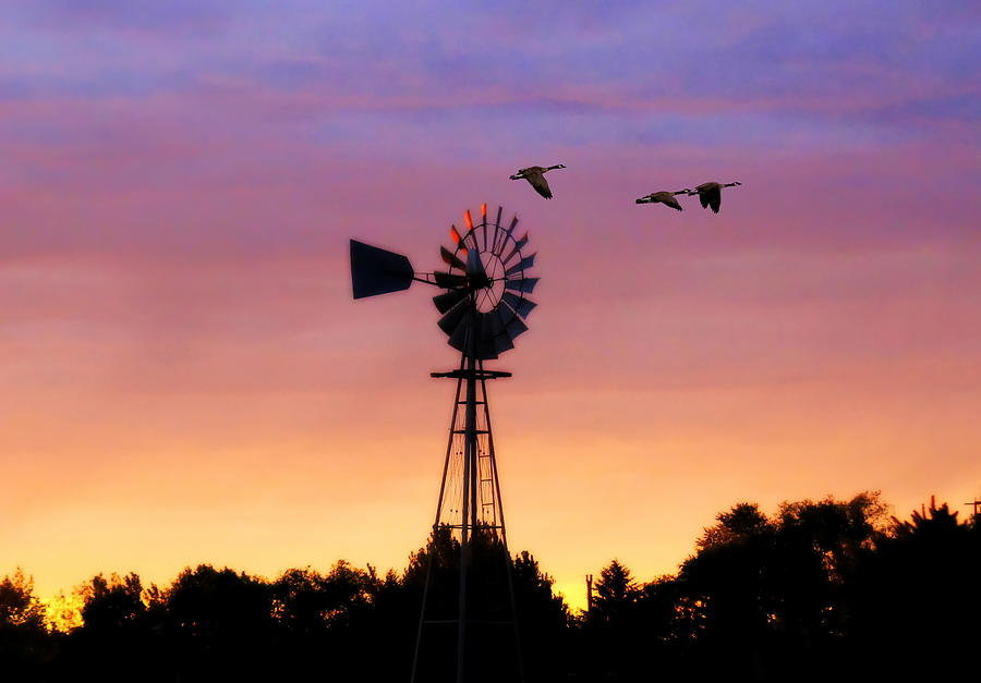 Windmill In The Sunset Photograph  - Windmill In The Sunset Fine Art Print