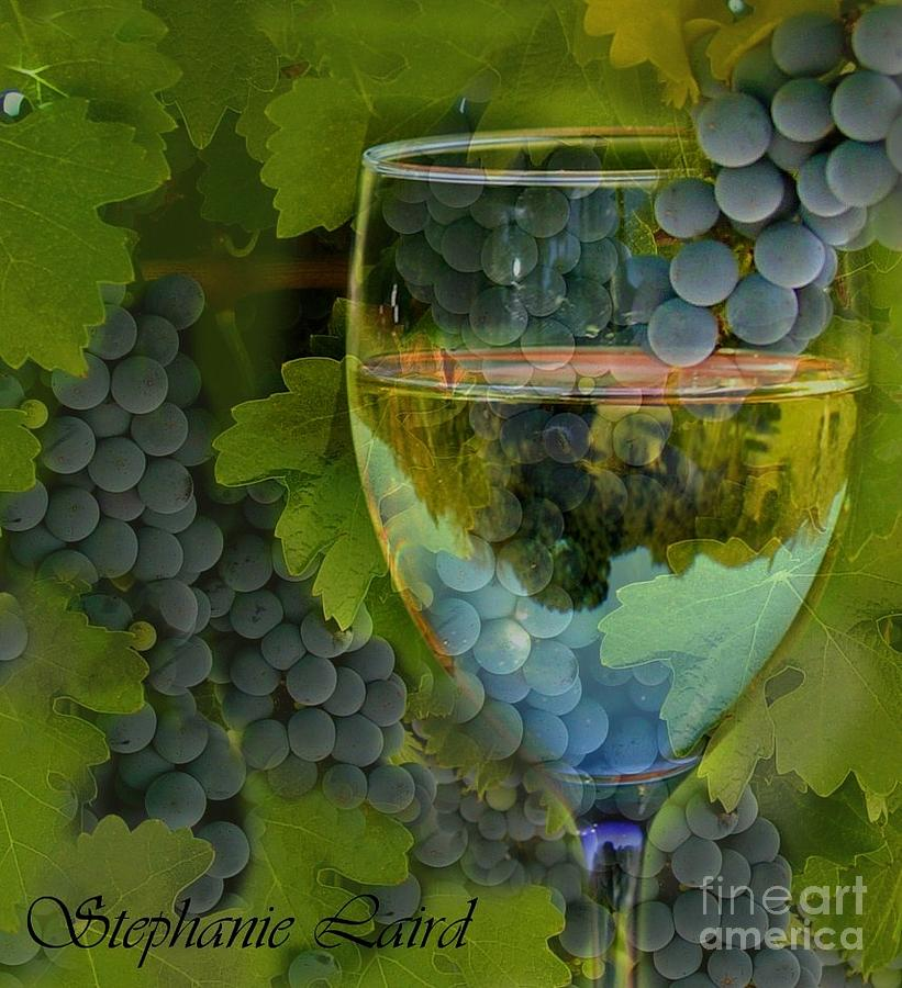 Wine Photograph - Wine Glass by Stephanie Laird