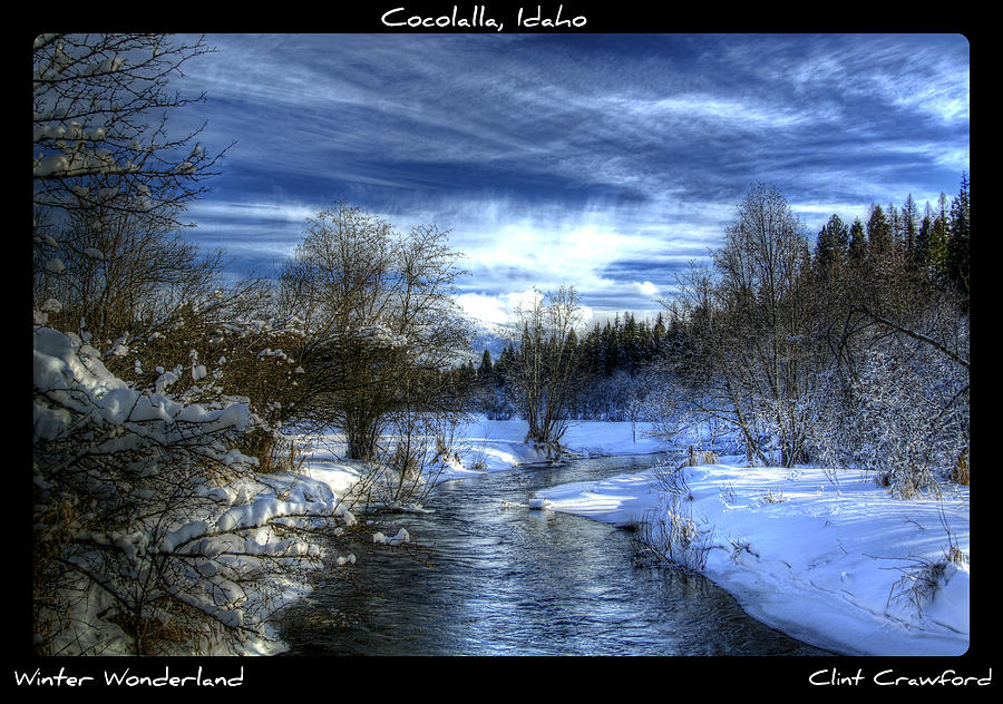 Winter Wonderland Photograph