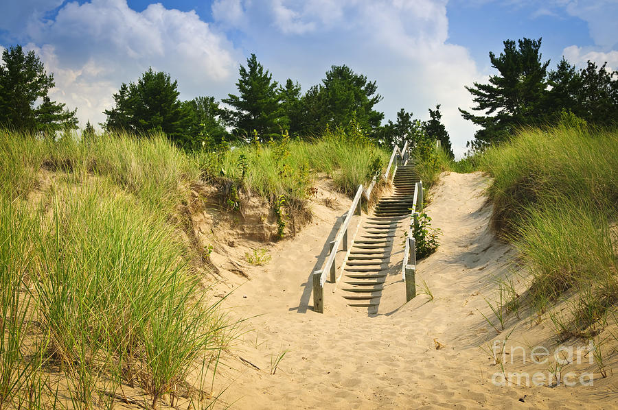 Wooden Stairs Over Dunes At Beach Photograph  - Wooden Stairs Over Dunes At Beach Fine Art Print