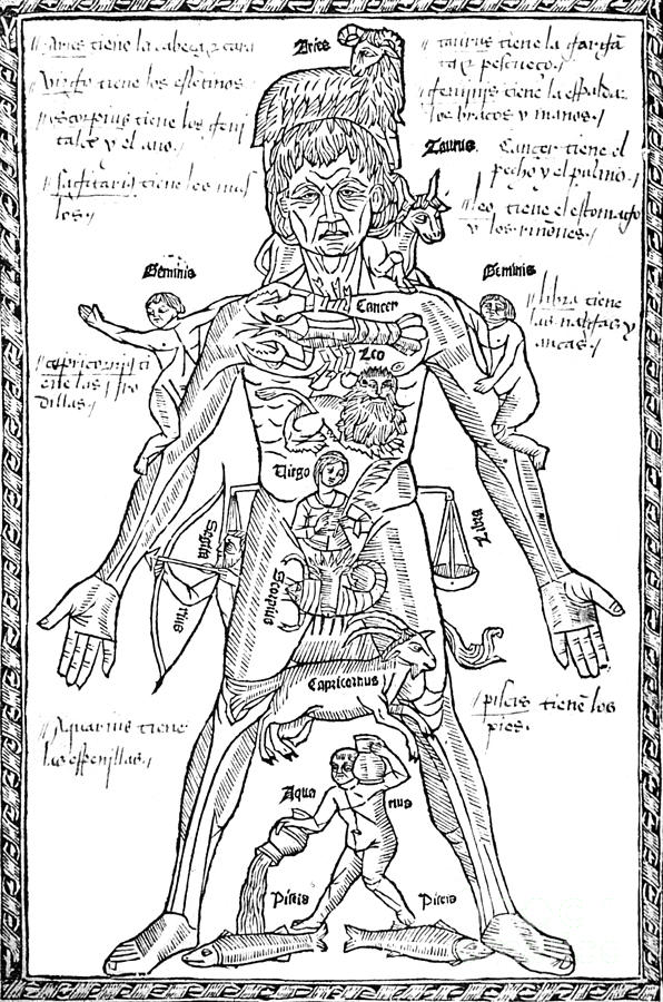 Zodiac Man, Medical Astrology Photograph
