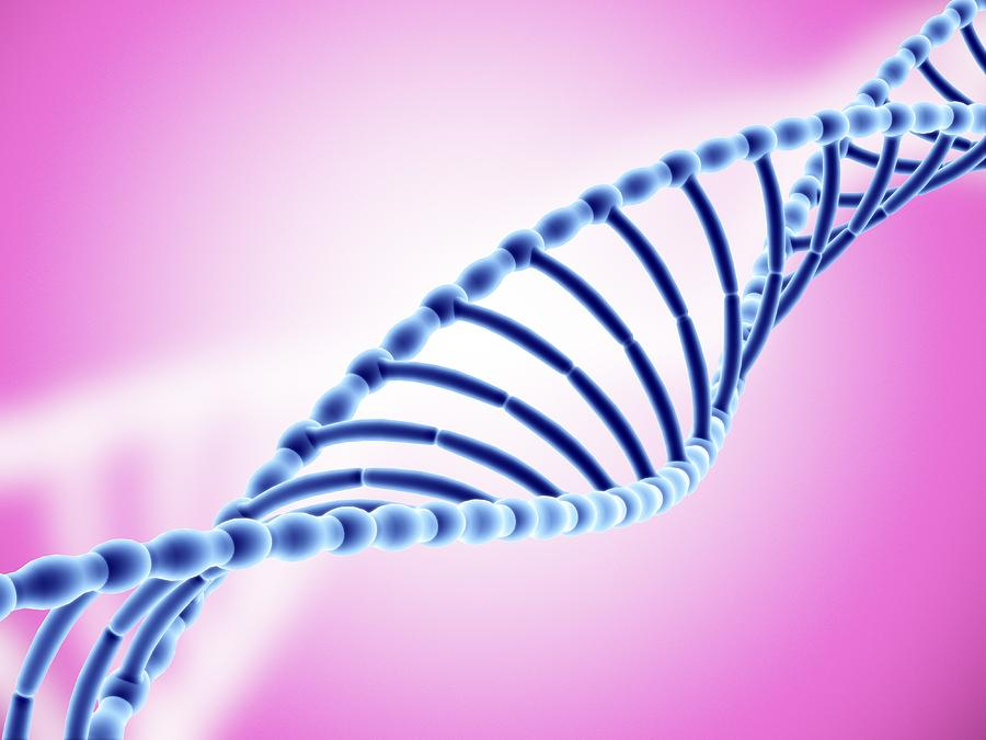 Dna Helix Photograph