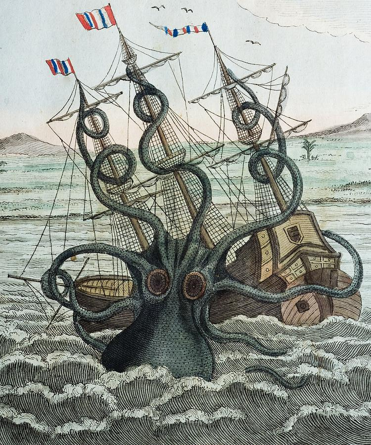 1815 Collosal Polypus Octopus And Ship Photograph