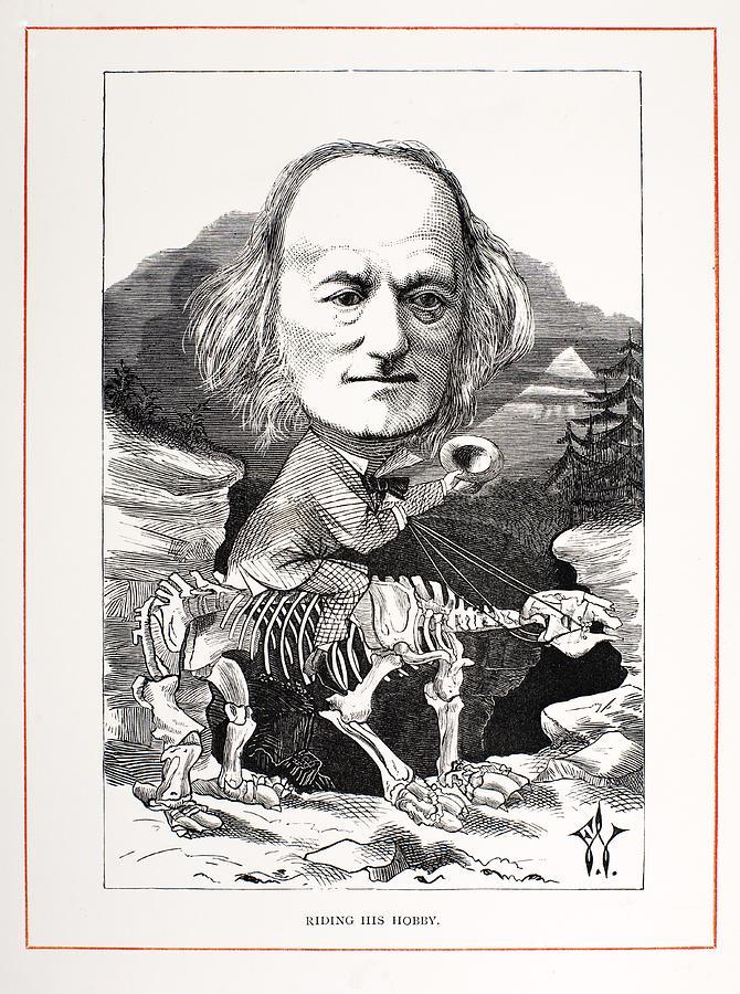 Kumtuks Tahlkie: Fossil Vertebrate of the Month: Megatherium ...