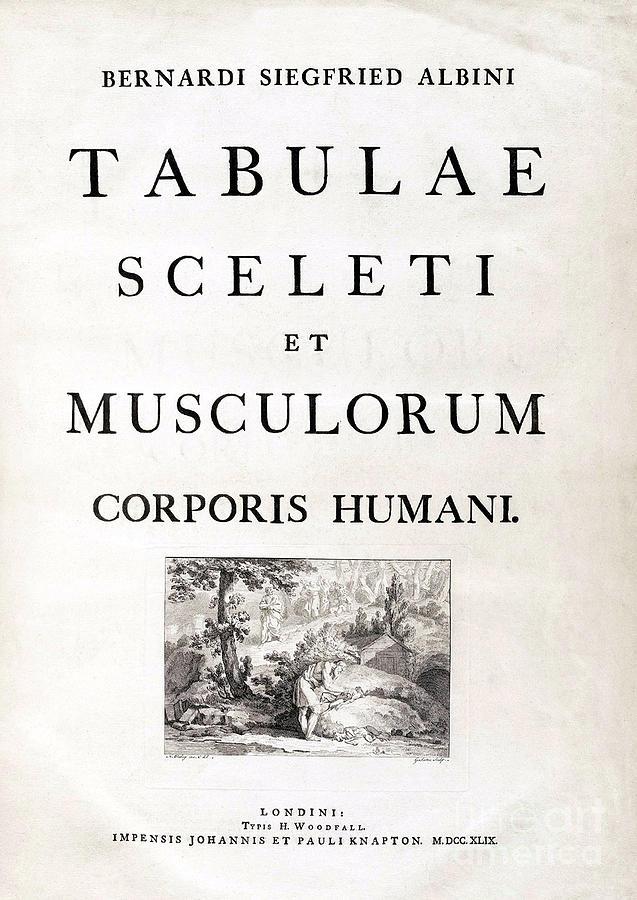 18th Century Anatomy Book Photograph