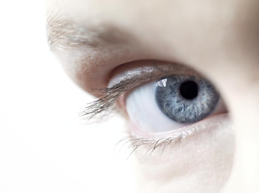 Womans Eye Photograph  - Womans Eye Fine Art Print