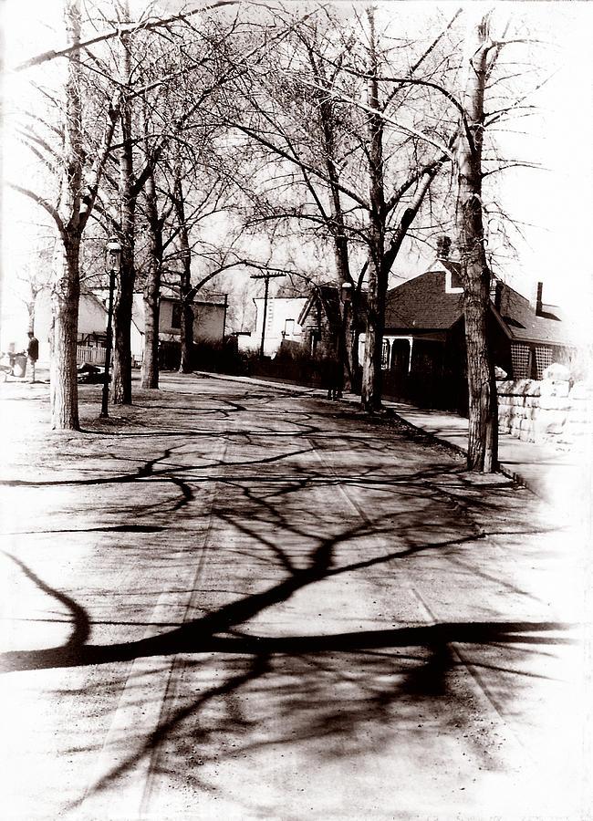 Farm Photograph - 1900 Street by Marcin and Dawid Witukiewicz
