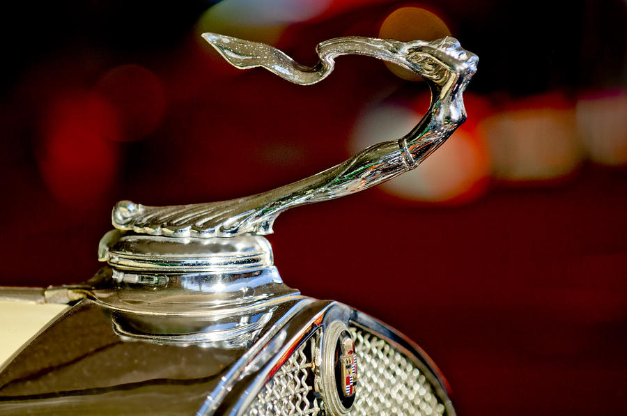1931 Cadillac 355 A Roadster Hood Ornament Photograph  - 1931 Cadillac 355 A Roadster Hood Ornament Fine Art Print