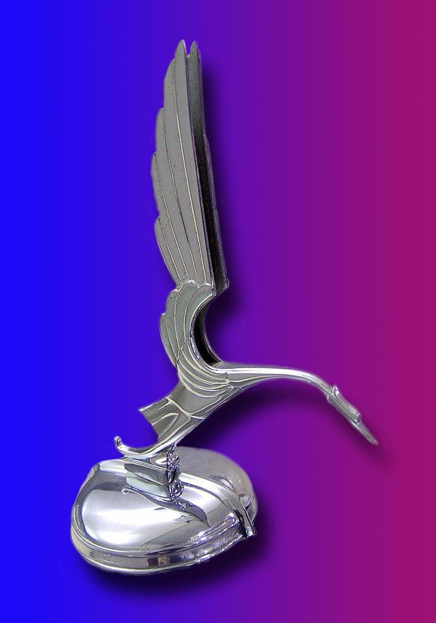 1931 Cadillac V-16 Heron Mascot Photograph
