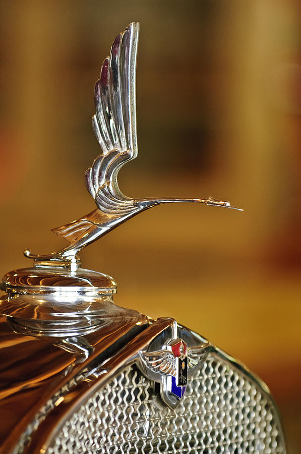 1931 Lasalle Hood Ornament Photograph  - 1931 Lasalle Hood Ornament Fine Art Print
