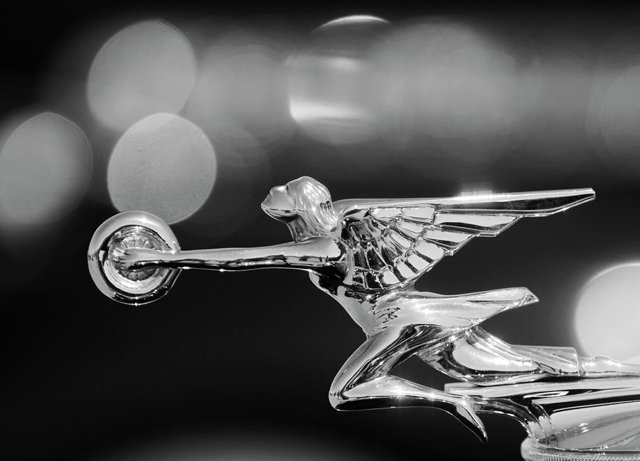 1932 Packard Hood Ornament 2 Photograph  - 1932 Packard Hood Ornament 2 Fine Art Print