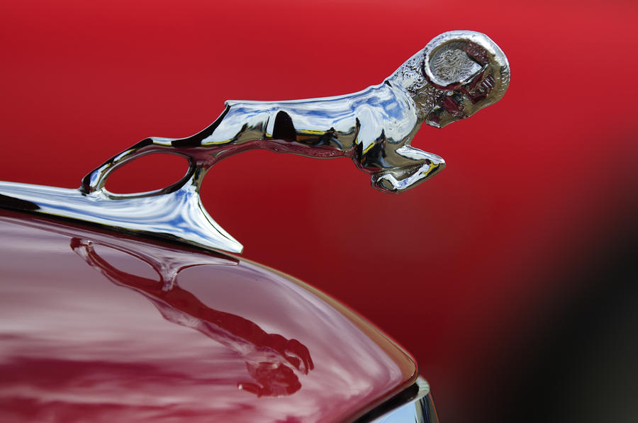 1936 dodge ram by jill reger. Cars Review. Best American Auto & Cars Review
