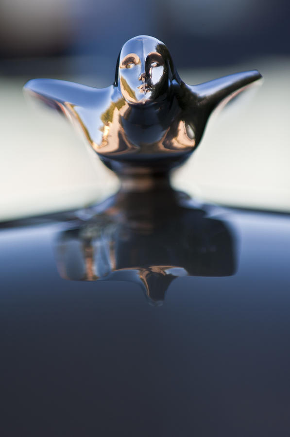 1947 Cadillac 62 Hood Ornament Photograph