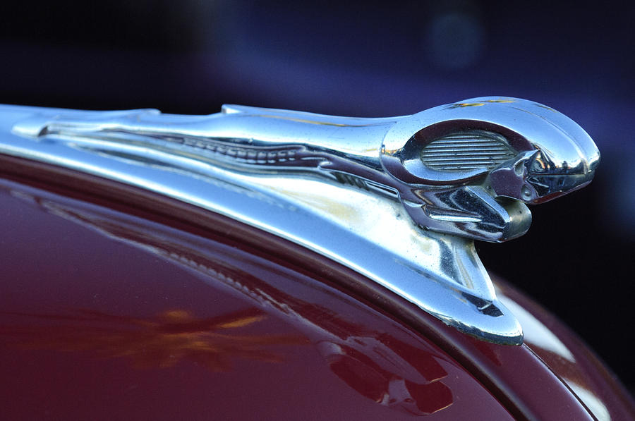 1948 dodge ram hood ornament by jill reger. Cars Review. Best American Auto & Cars Review