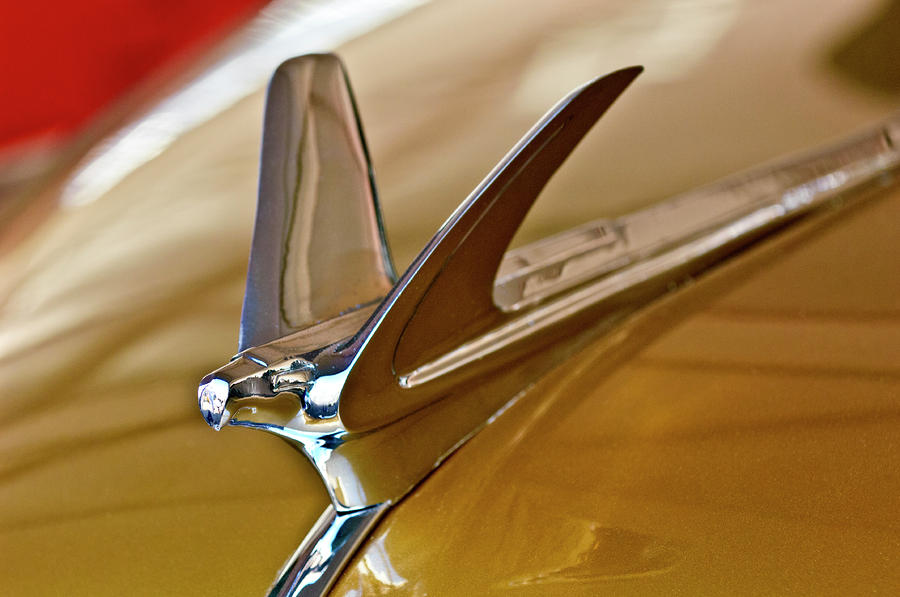 1949 Chevrolet Fleetline Hood Ornament Photograph
