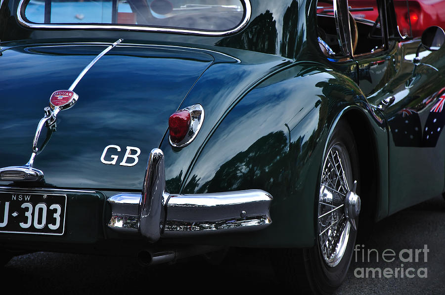 1956 Jaguar Xk 140 - Rear And Emblem Photograph  - 1956 Jaguar Xk 140 - Rear And Emblem Fine Art Print