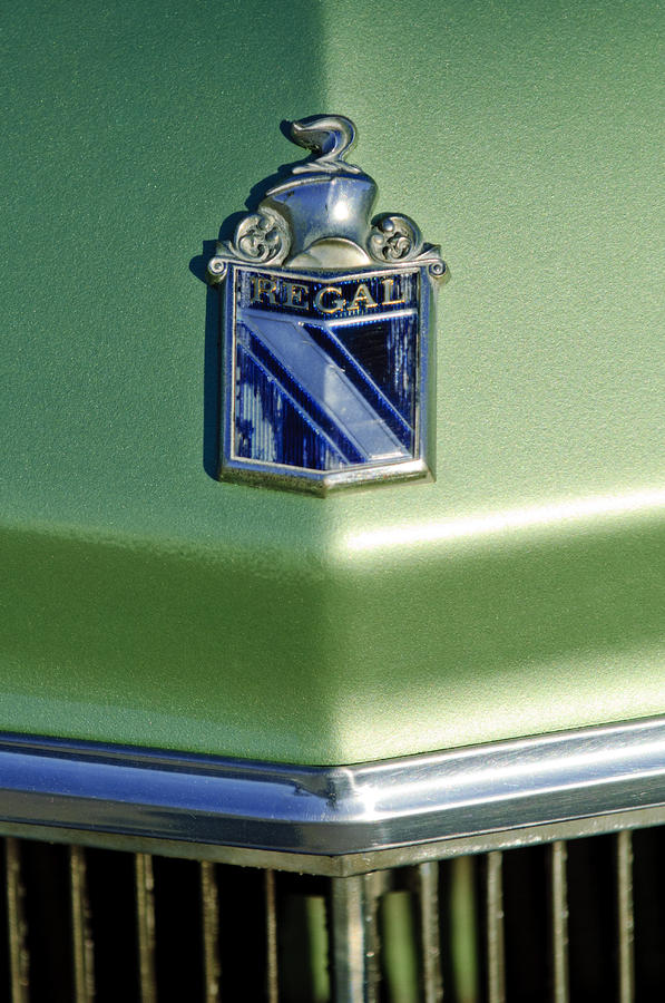 1973 Buick Regal Hood Ornament Photograph  - 1973 Buick Regal Hood Ornament Fine Art Print