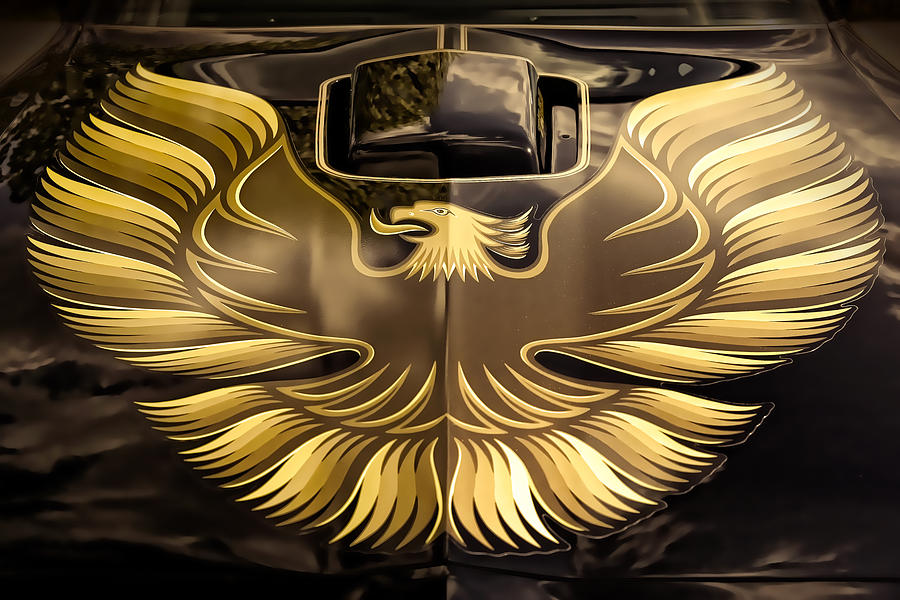 1979 Pontiac Trans Am  Photograph  - 1979 Pontiac Trans Am  Fine Art Print