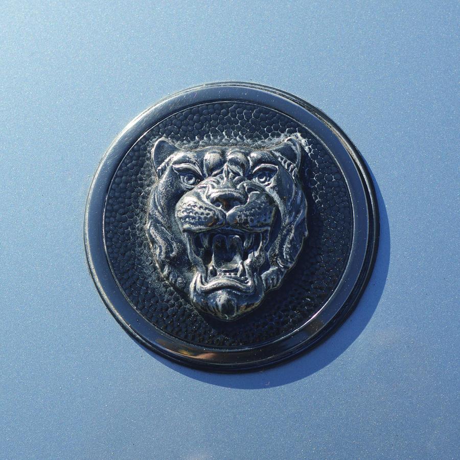 1992 Jaguar Xjs Emblem Photograph