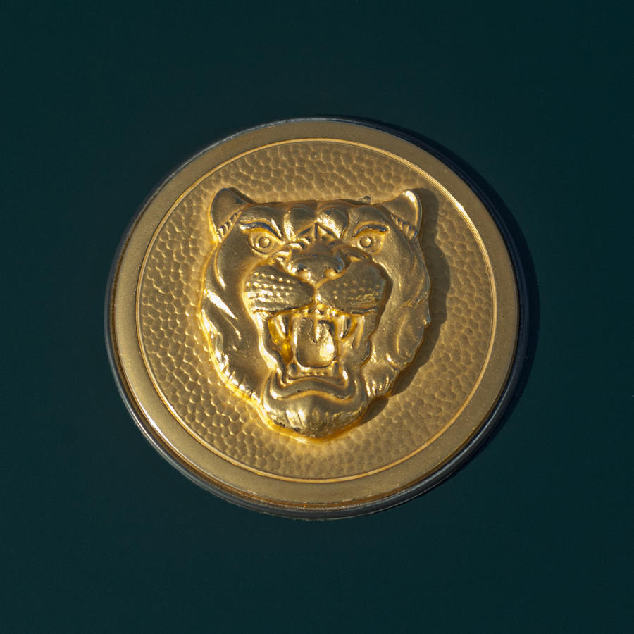 1994 Jaguar Xjs Emblem Photograph