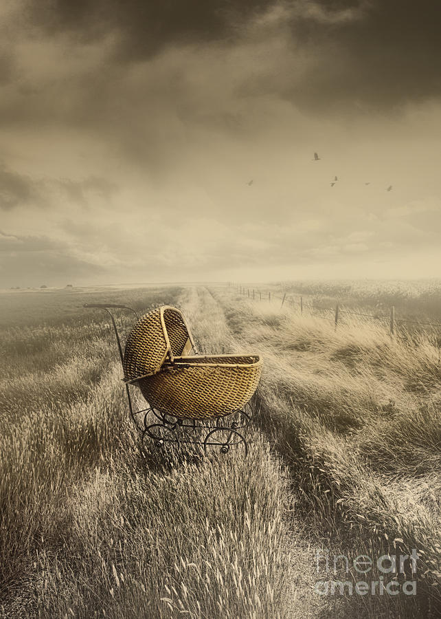Abandoned Antique Baby Carriage In Field Photograph