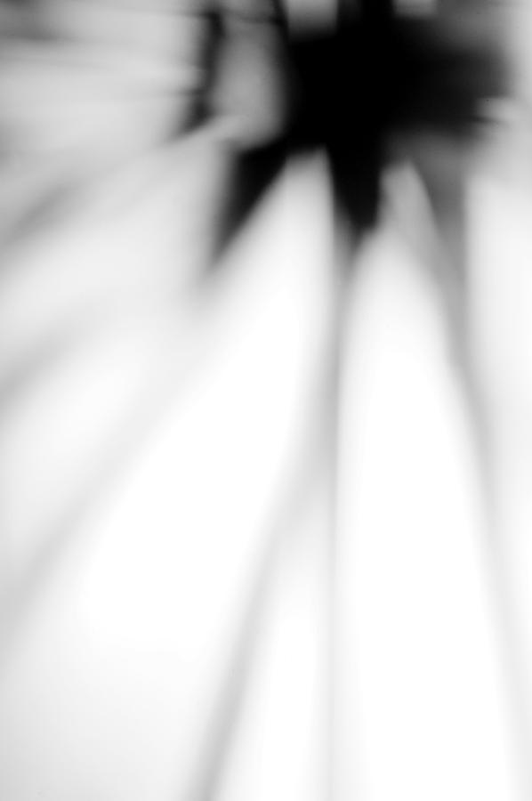 Abstract Stillife Photograph