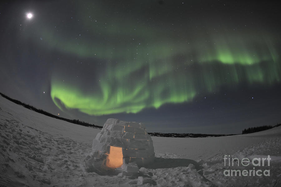 Aurora Borealis Over An Igloo On Walsh Photograph  - Aurora Borealis Over An Igloo On Walsh Fine Art Print