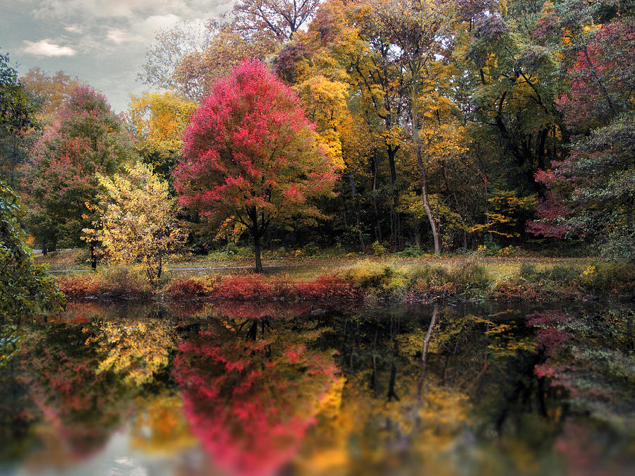 Autumns Mirror Photograph
