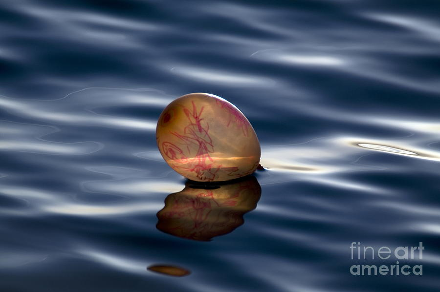 Balloon Photograph  - Balloon Fine Art Print