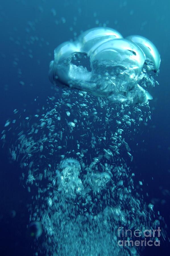 Bubbles underwater photograph