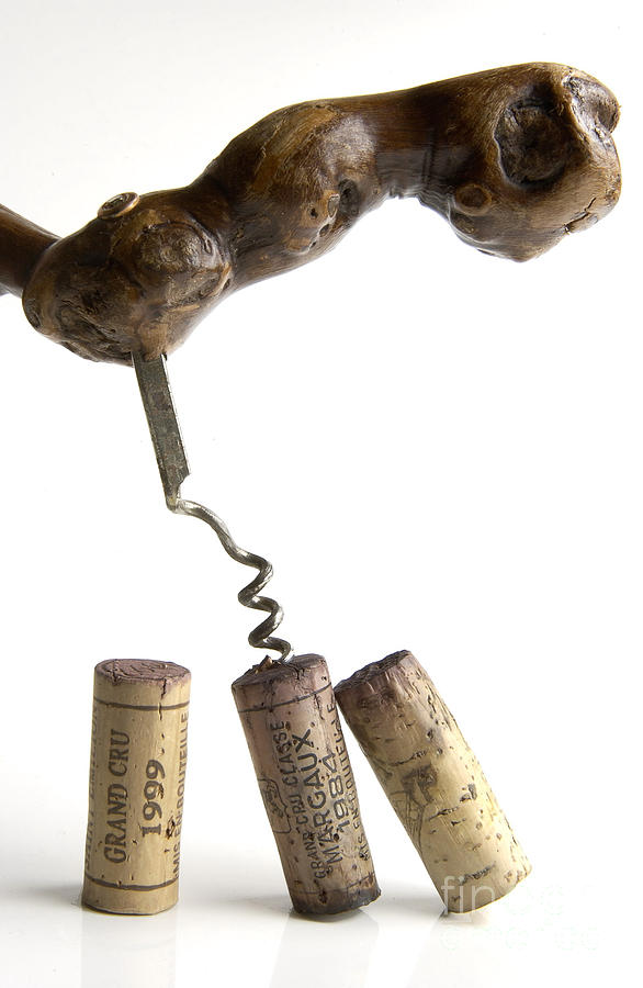 Corks Of French Wine. Photograph