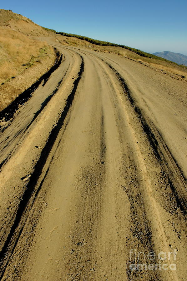 Dirt Road Winding Photograph  - Dirt Road Winding Fine Art Print