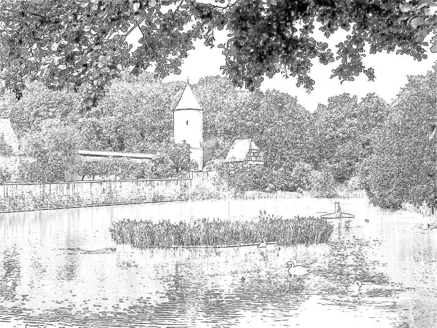 Duck Pond Dinkelsbuhl Germany Photograph