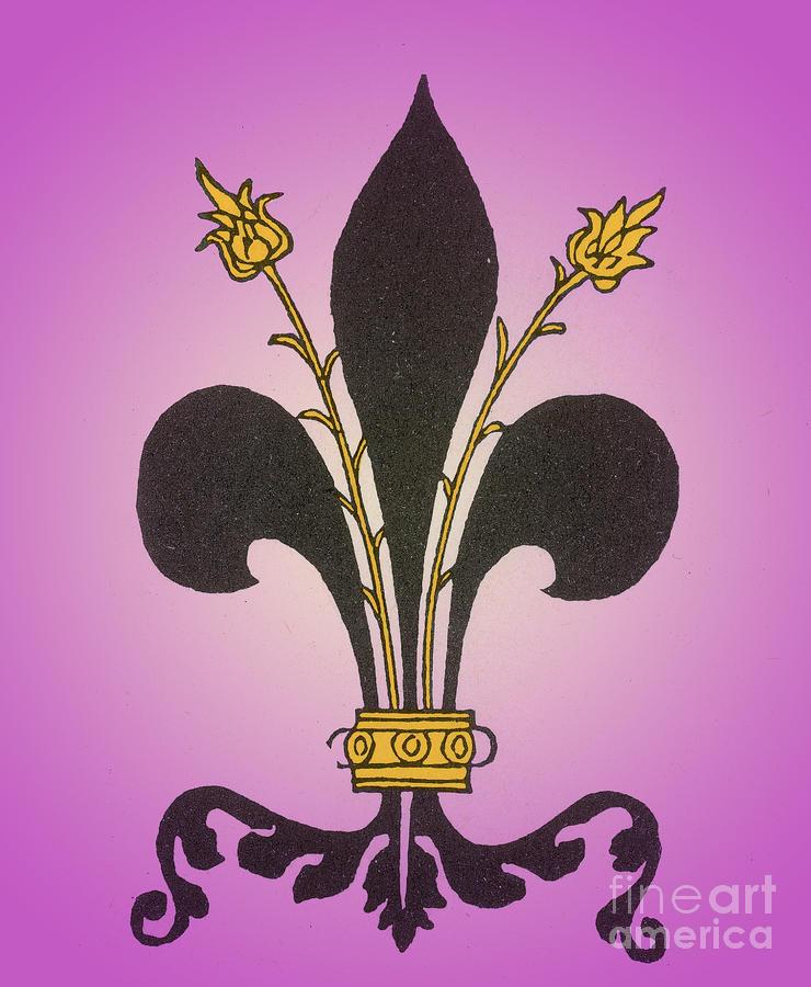 Fleur-de-lis Photograph - Fleur-de-lis by Science Source