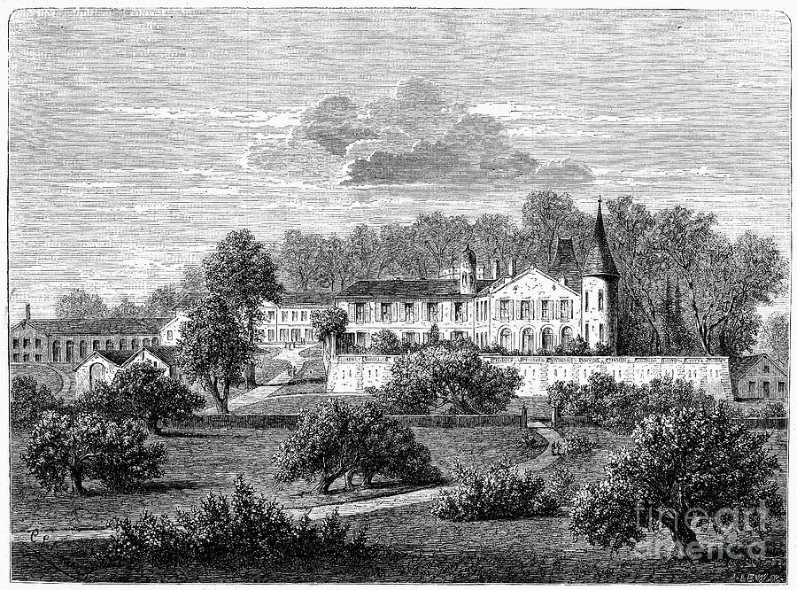 France: Wine Ch�teau, 1868 Photograph